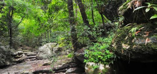 ธารแห้งไม่ได้แล้งอย่างที่เห็น น้ำบางสายหลบซ่อนสายตาไปอยู่ใต้ดิน หลบลี้เพื่อหล่อเลี้ยงป่า รอวันให้ฝนพรมลงมา เมื่อถึงเวลานั้น สายน้ำจะกลับมา รินไหลให้เห็นกายาอันลี้ลับ  ภูเรือ เมืองเลย