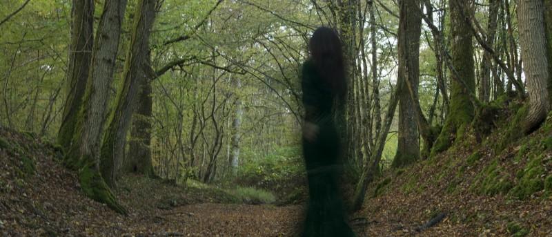 """""""นางไม้"""" [Dryopes] นิทรรศการภาพถ่ายโดย เชน บุนนาค"""