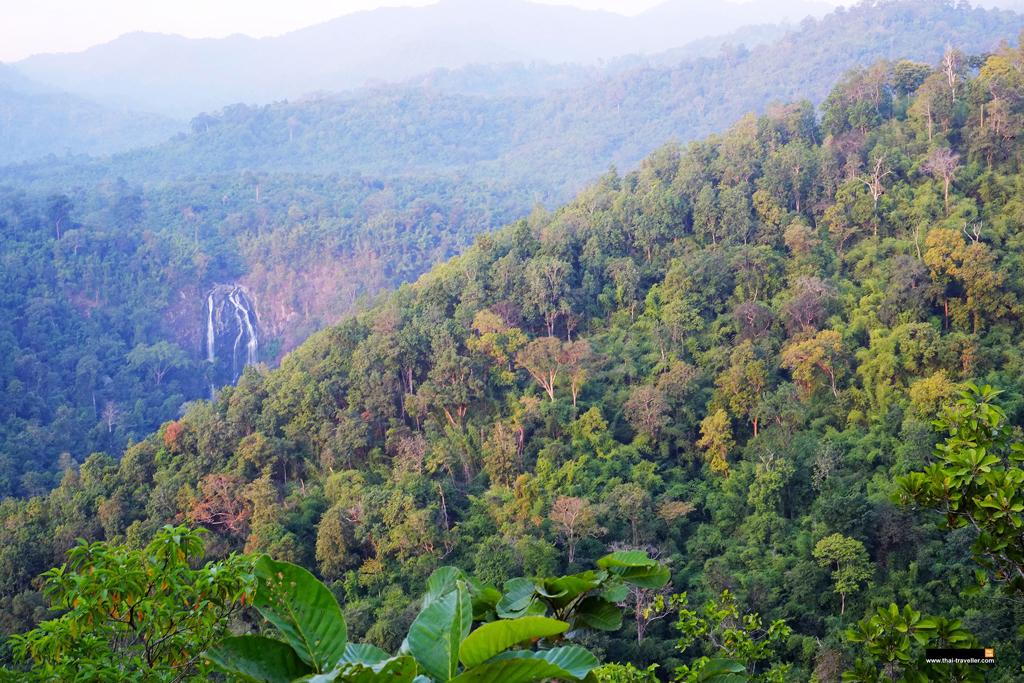 สายน้ำคลองลานรินไหลกลางป่า