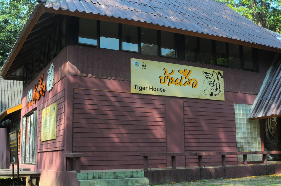บ้านเสือเป็นอาคารนิทรรศการ ความรู้มากมายเกี่ยวกับป่าอัดแน่นอยู่ในนี้