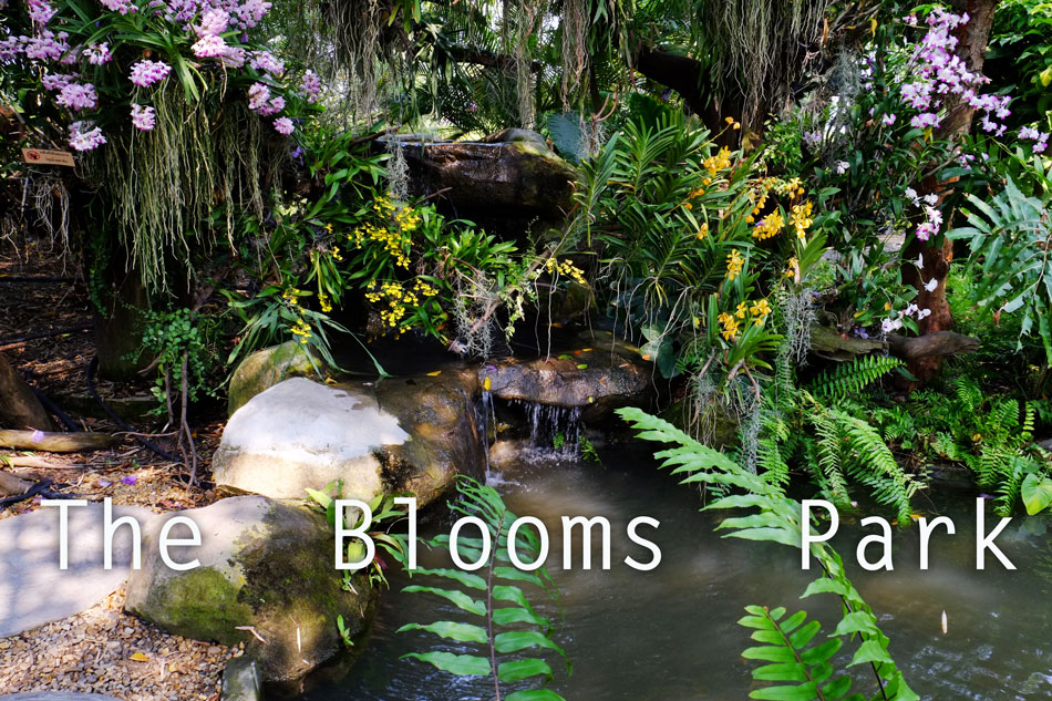 The Blooms Park