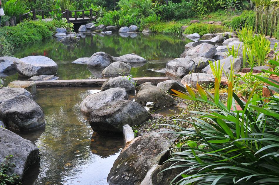 ธารหินรินน้ำไหล ภายในมีปลาคราฟท์แหกว่าย