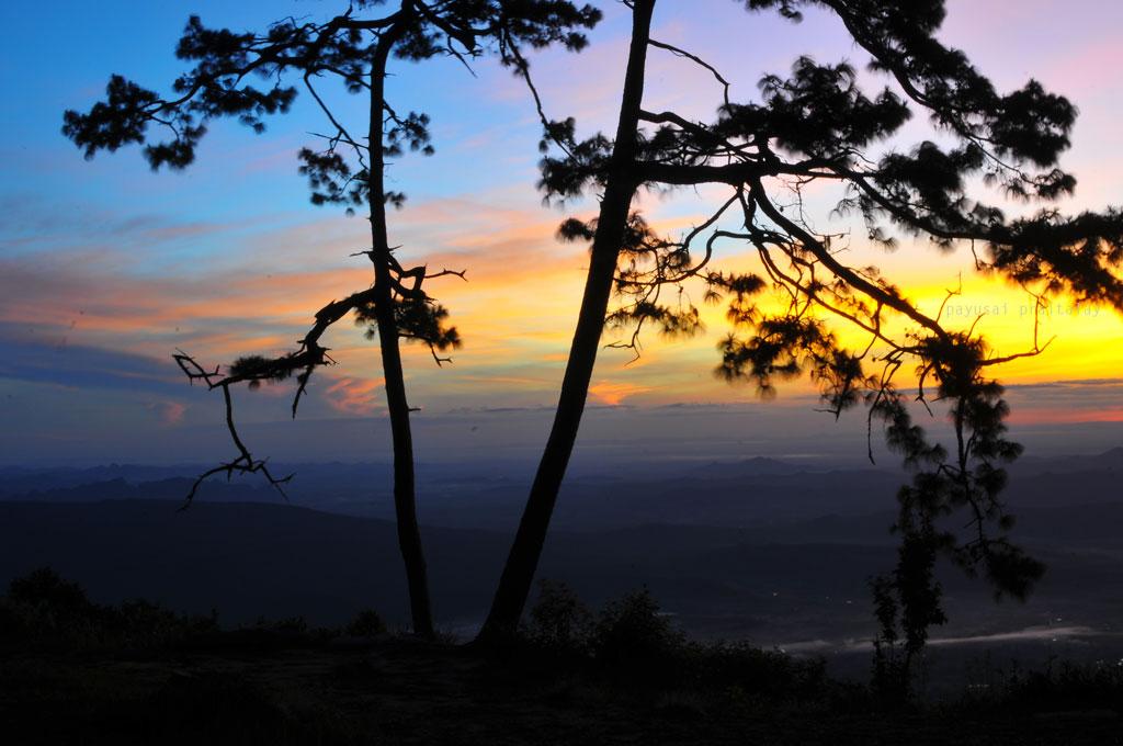 รุ่งสาง แสงอาทิตย์จับขอบฟ้า บันทึกภาพที่ผานกแอ่น