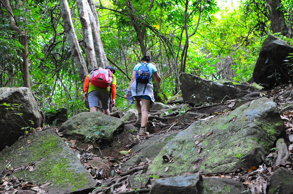 ทางเดินช่วงแรกต้องผ่านป่าไผ่ แนวหินระเกะระกะ ภูกระดึงหน้าฝน (Phukradueng Wakeup Run)