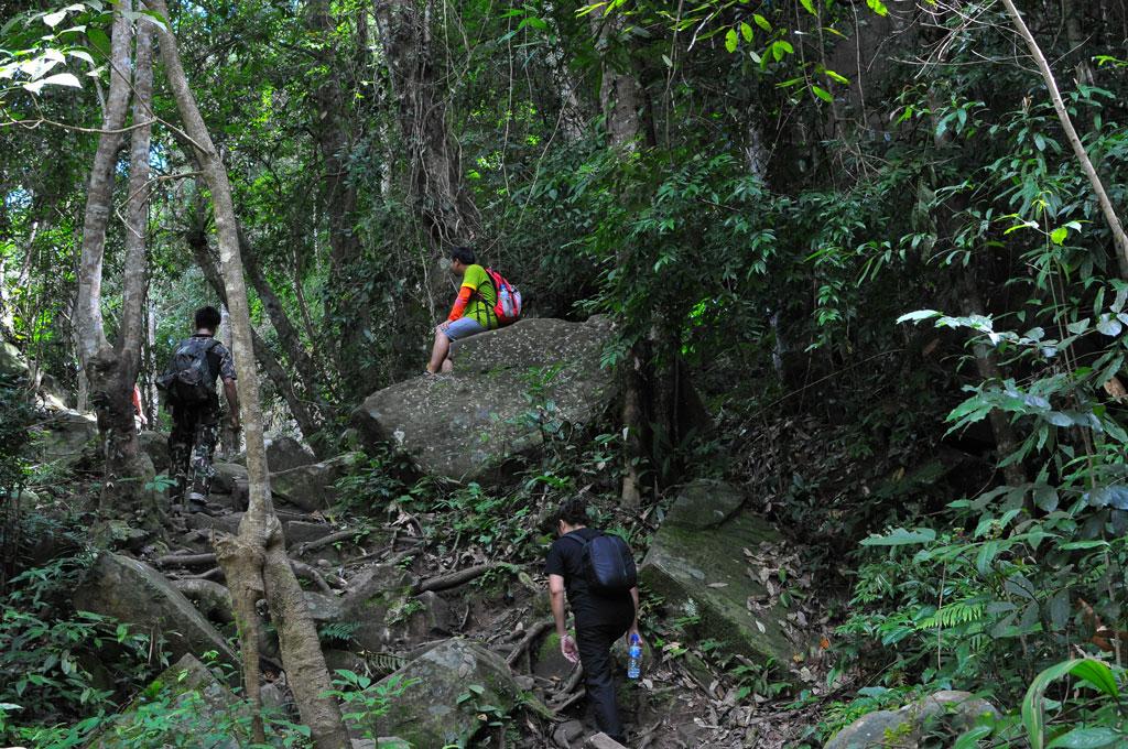 ภูกระดึงหน้าฝน (Phukradueng Wakeup Run)
